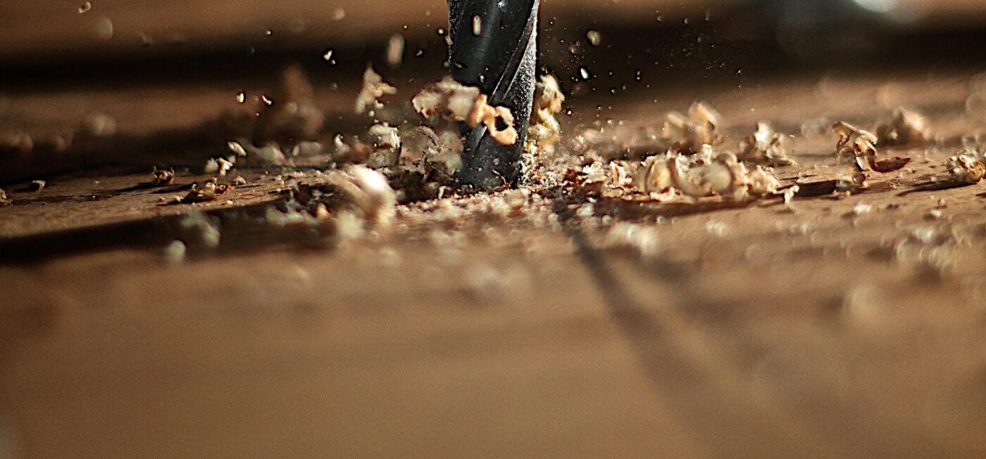 types de bois pour les montres